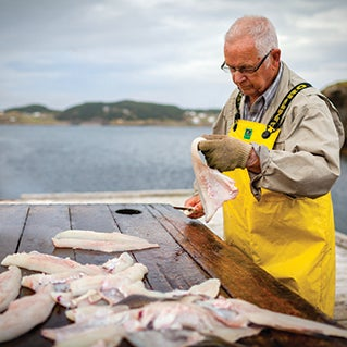 10 palate-pleasing ways to take in St.John's this summer