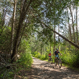 The best bet for bike riders is East Burke, Vermont